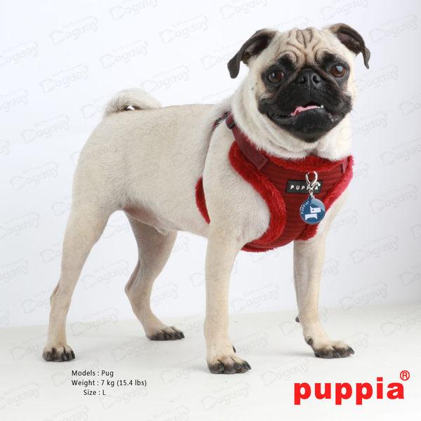 國際名品《Puppia》特洛伊胸背心C款 S/M號 胸背+拉繩組合價 約克夏/吉娃娃/貴賓/馬爾濟斯