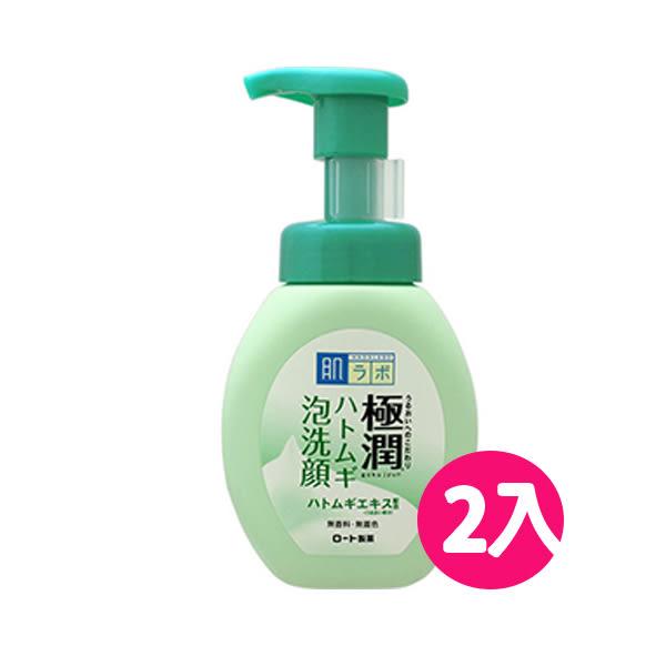 ROHTO肌研 極潤保濕泡洗顏(薏仁)洗面乳160ml*2入