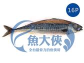 F0【魚大俠】FH147薄鹽漬挪威鯖魚(16尾/6KG/件)#MK16P