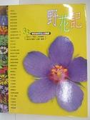 【書寶二手書T7/動植物_DO2】野花記-33個有趣的野花主題觀察_張永仁