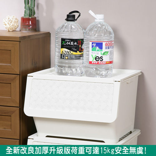 《真心良品》凡爾賽藤紋直取式家庭收納箱65L(2入)