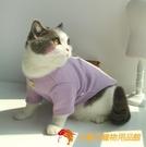 網紅寵物衣服狗狗貓咪衣服/糖果色華夫格短袖T恤衫/春夏新款【小獅子】