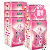 【6盒】IVENOR 丰乳王美波錠(30粒/盒)【Miss Sugar】【C000062】