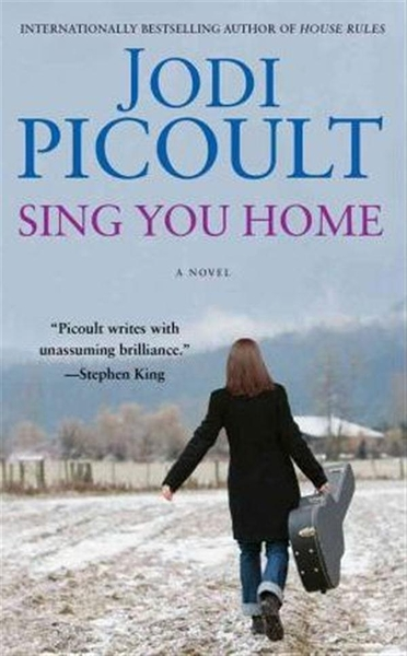 (二手書)Sing You Home: A Novel