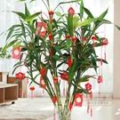 燈籠 新年過年大紅植絨小燈籠掛飾盆景室內...