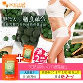 綠藻錠 ✹ 肉食主義 均衡飲食  順暢健康 【約6個月份】ogaland