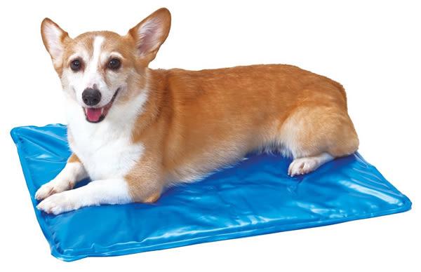 PetLand寵物樂園《日本PETIO》夏日柔軟涼墊散熱墊 - 藍色 L號 / 中型犬適用 /  隔離地板的熱氣濕