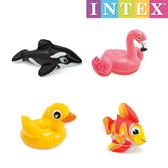 Intex 充氣玩具-(4款隨機出貨)