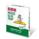 最划算大黏鼠板X2入【愛買】...