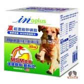 【寵物王國】美國原裝IN-PLUS贏超濃縮卵磷脂(關節保健 MSM加強配方)犬用12oz(340g)