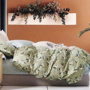 BUTTERFLY-純棉三件式枕套床包組-依芸-綠(雙人)
