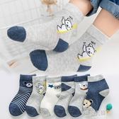 春秋冬季純棉兒童襪子男童女童寶寶嬰兒秋冬款中筒襪3-5-7歲9童襪 9號潮人館