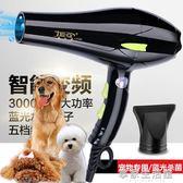 寵物電吹風機狗狗大小型犬專用洗澡風干大功率靜音吹風筒金毛泰迪·享家生活館