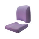(組)HOLA高密度抗菌健康釋壓腰靠坐墊組-紫