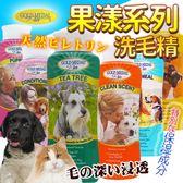 【zoo寵物商城】美國康蒂娜》果漾系列寵物洗毛精多種毛髮需要洗淨元素-500ml