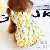 菠蘿裙子小狗狗衣服春秋貓咪寵物小型犬夏【極簡生活】