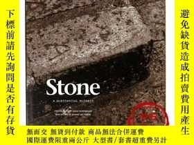 二手書博民逛書店Stone:罕見A Substantial Witness 石頭:一個重要的證人Y23770