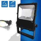 (日機) LED投光燈 台灣製造 LED 28W 防水 通過防雷擊測試 抗突波保護 防雨型電線插頭 NLFL30-AC
