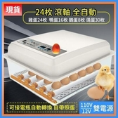 小雞孵化機全自動家用智能孵化器小型雞蛋孵蛋器卵化器鸚鵡雞鴨鵝孵蛋機孵化器雞鴨家禽110v