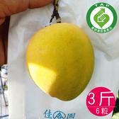 金蜜黃芒果3台斤(6粒)免運組