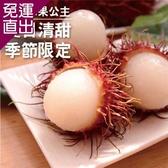 五甲木 泰國新鮮直送-冷凍紅毛丹(500g/包,共三包) EE0200002【免運直出】