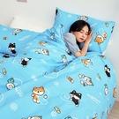 床包 / 雙人【逗柴貓藍】含二件枕套,磨毛多工法處理,戀家小舖台灣製 柴犬 貓