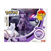 精靈寶可夢 Pokemon 變形系列 超夢 大師球 酷變 庄臣 正體中文代理版 TOYeGO 玩具e哥