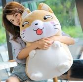 公仔 可愛大狗熊布娃娃抱抱熊女熊貓毛絨玩具睡覺著床上抱枕男生款 - 雙十二交換禮物