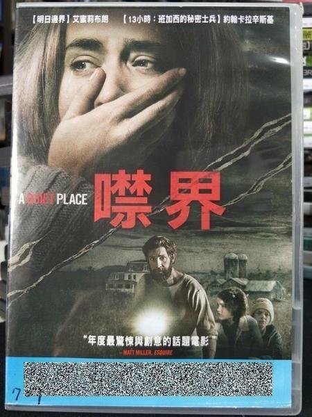 挖寶二手片-P66-037-正版DVD-電影【噤界】-列車上的女孩-艾蜜莉布朗*結婚糾察隊-約翰卡辛斯基(直