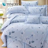 【貝兒居家寢飾生活館】裸睡系列60支天絲床罩七件組(特大/艾琳娜藍)