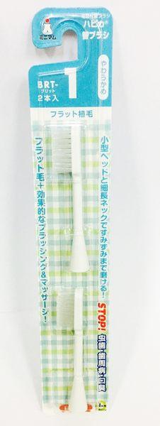 日本原裝 HAPICA 成人電動牙刷替換刷頭(2入)