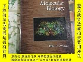 二手書博民逛書店Molecular罕見Biology Fourth Editio