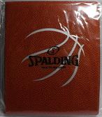 SPALDING 斯伯丁 籃球皮戰術盤 SPB89106