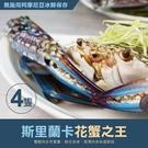 【屏聚美食】巨無霸斯里蘭卡公花蟹4隻(400G/隻)
