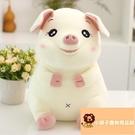 小寵物可愛豬公仔小豬毛絨玩具睡覺抱布娃娃抱枕軟體【小獅子】