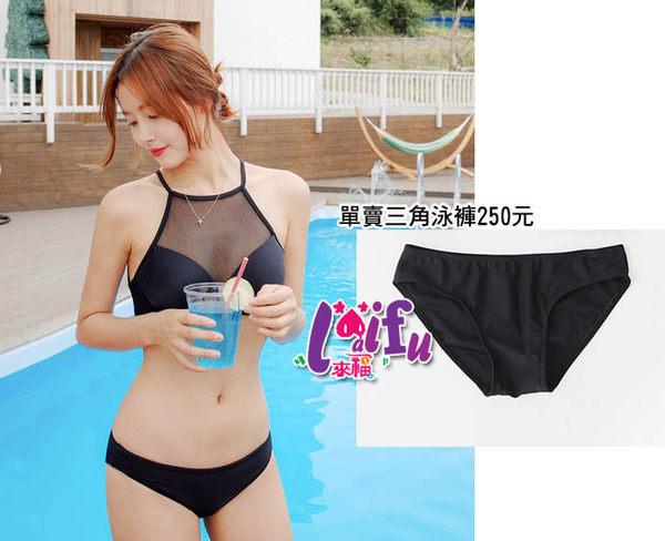 ★草魚妹★V189泳褲每人都要一件三角泳褲短褲泳褲,單泳褲售價250元