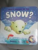 【書寶二手書T7/少年童書_NEY】Who s Hiding in the Snow?_Susie Brooks