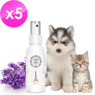 【愛戀花草】薰衣草精油 白毛亮澤寵物香水《100ML / 五瓶組》