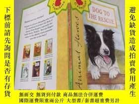 二手書博民逛書店Dog罕見to the rescue救命的狗Y212829