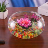 創意水族箱圓形玻璃生態金魚缸烏龜缸小型水培花瓶容器桌面小魚缸