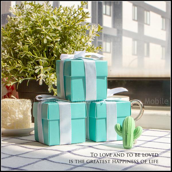 Tiffany盒仙人掌擴香石風口夾(贈2ml香氛精油) 汽車出風口夾 婚禮小物 情人節禮物 聖誕禮物