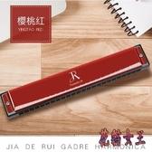 口琴初學者高級成人兒童24孔復音C調口風琴自學入門樂器 AW16883【花貓女王】