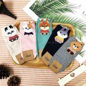 【KP】韓國 22-26cm 可愛動物 熊貓 貓咪 兔子 棕熊 成人襪 直版襪 襪子 DTT10000692