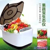 家用果蔬清洗機洗菜機凈化器全自動食材臭氧消毒蔬果解毒水果蔬菜 快速出貨