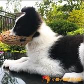 買一送一狗狗防咬嘴套大小型犬口罩防叫嘴籠嘴罩【小獅子】