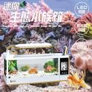 《嚴選》迷你生態水族箱