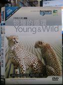 影音專賣店-P09-099-正版DVD*紀錄【物競天擇07:物種的循環】-Discovery