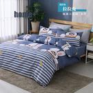 【BEST寢飾】雲絲絨 鋪棉兩用被套 雙人 拉拉兔 舒柔棉 台灣製造