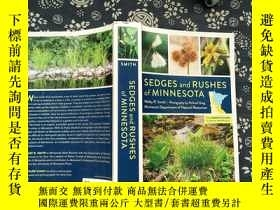 二手書博民逛書店SEDGES罕見and RUSHES of MINNESOTAY