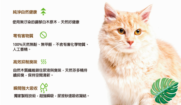 PetLand寵物樂園《美喵人生》貓砂 凝結型 - 白木貓砂